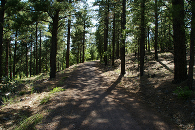 Tunnel Springs Trail