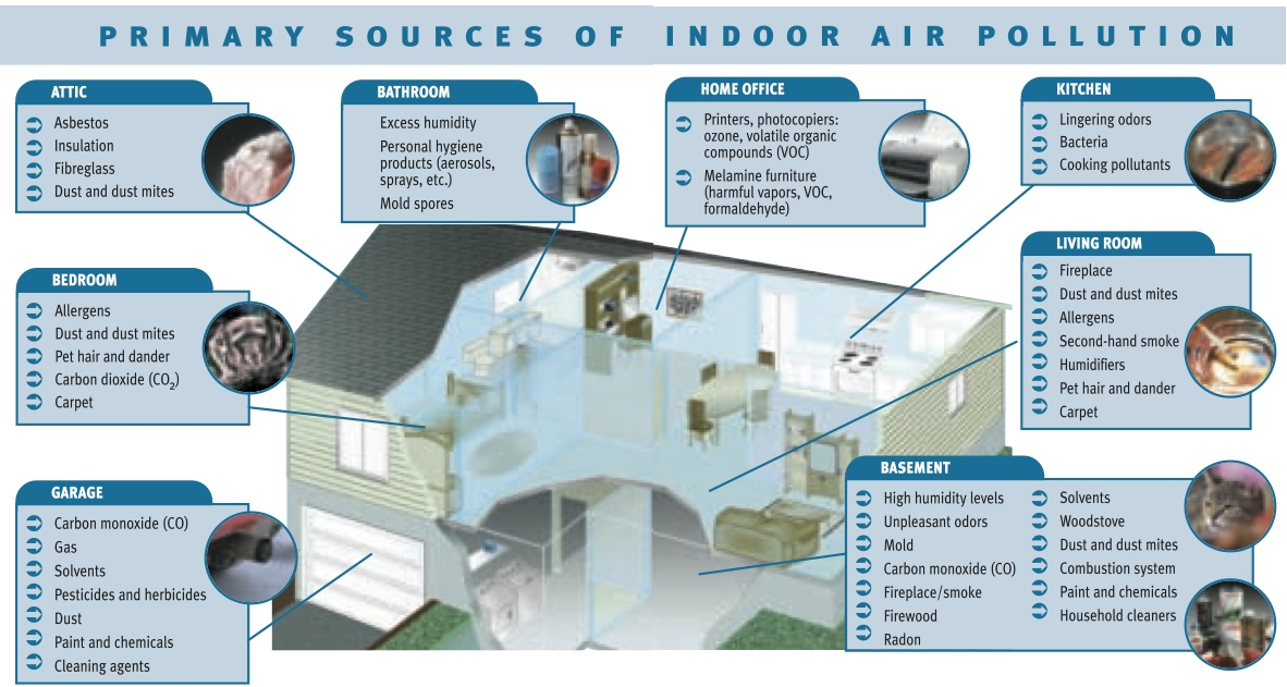 Indoor Air Quality & Mold | City of Flagstaff Official Website