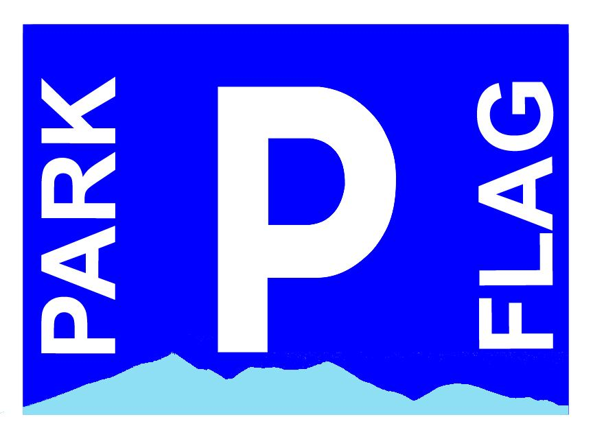 Parking Logo Large