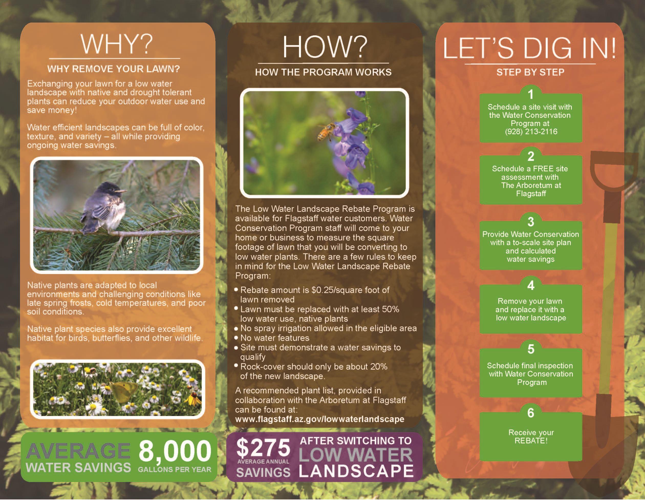 Low Water Landscape Program | City of Flagstaff Official Website
