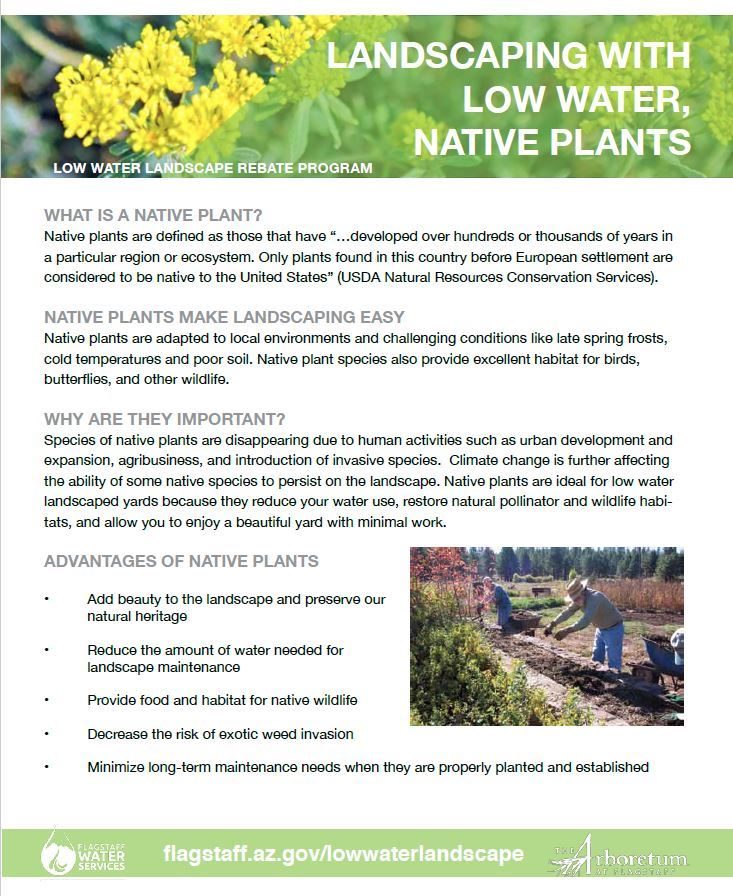 LowWaterLandscapeInfo_PDF_Native Plants
