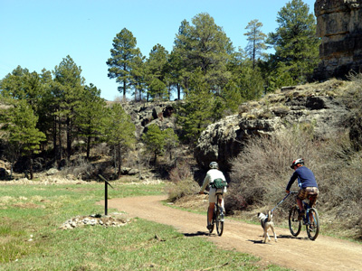 Family biking on trail