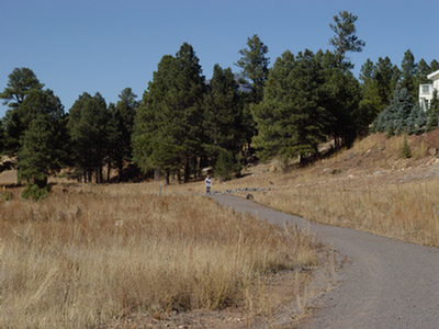 Switzer Wash Trail